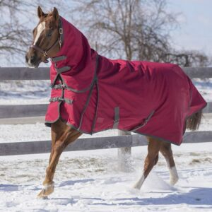Canadian Horsewear Diablo Turnout Winter Blanket Burgundy 17050